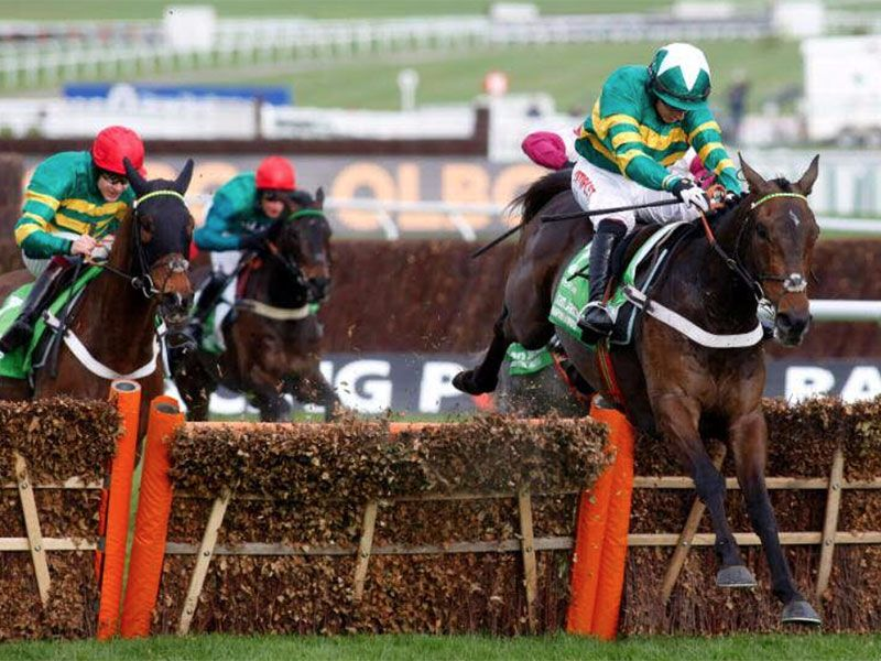 Buveur d'Air - Champion Hurdle Challenge Trophy (Gr1)